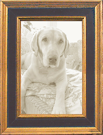 Black Gold Panel Traditional Picture Frame — MUSEUM FACSIMILES