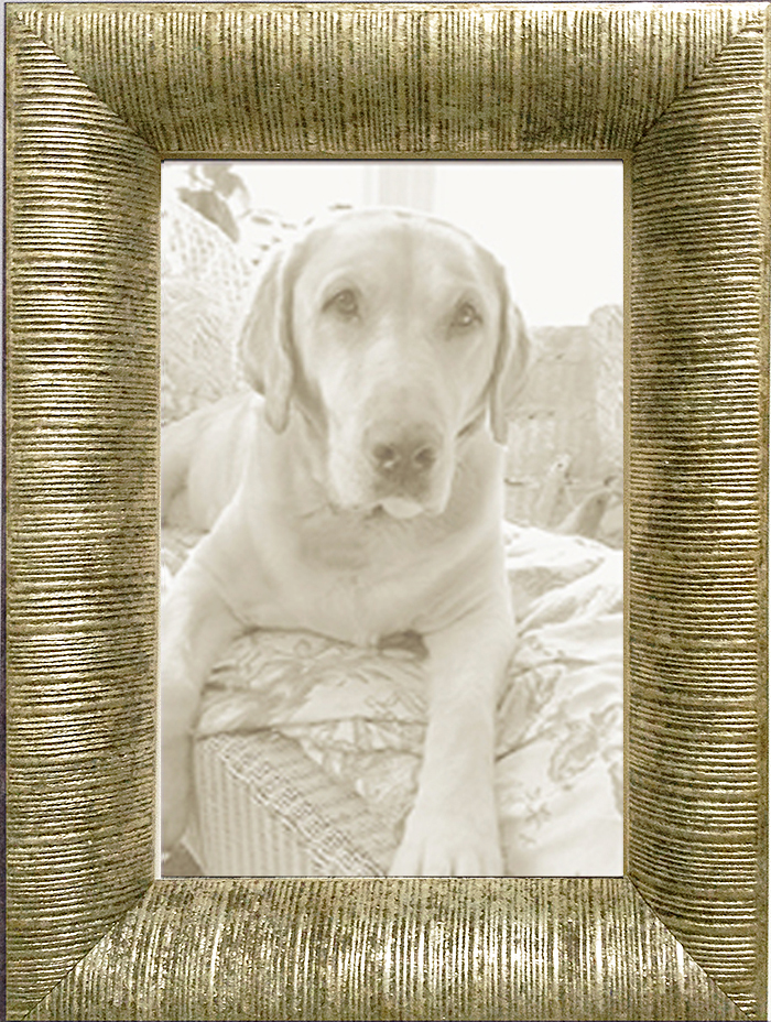 Ornate Silver Leaf Ribbed Contemporary Picture Frame — MUSEUM FACSIMILES