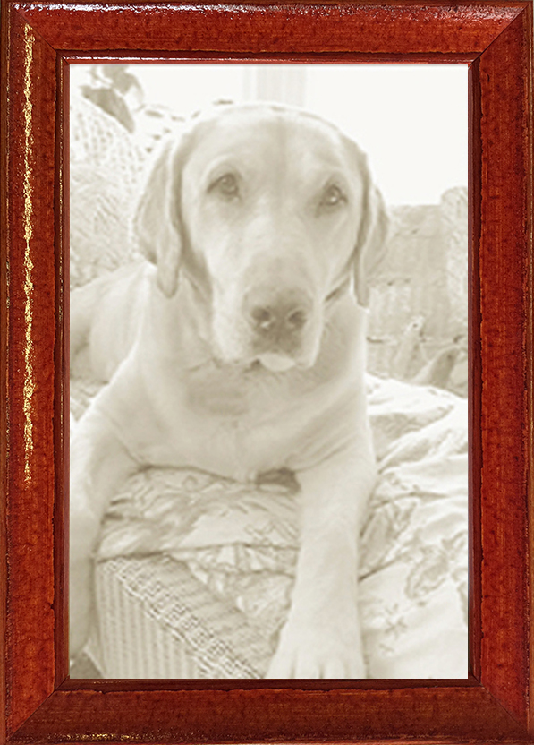 distressed and color picture frames — MUSEUM FACSIMILES