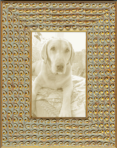 Funky Gold Circles Decorative Picture Frame Museum Facsimiles
