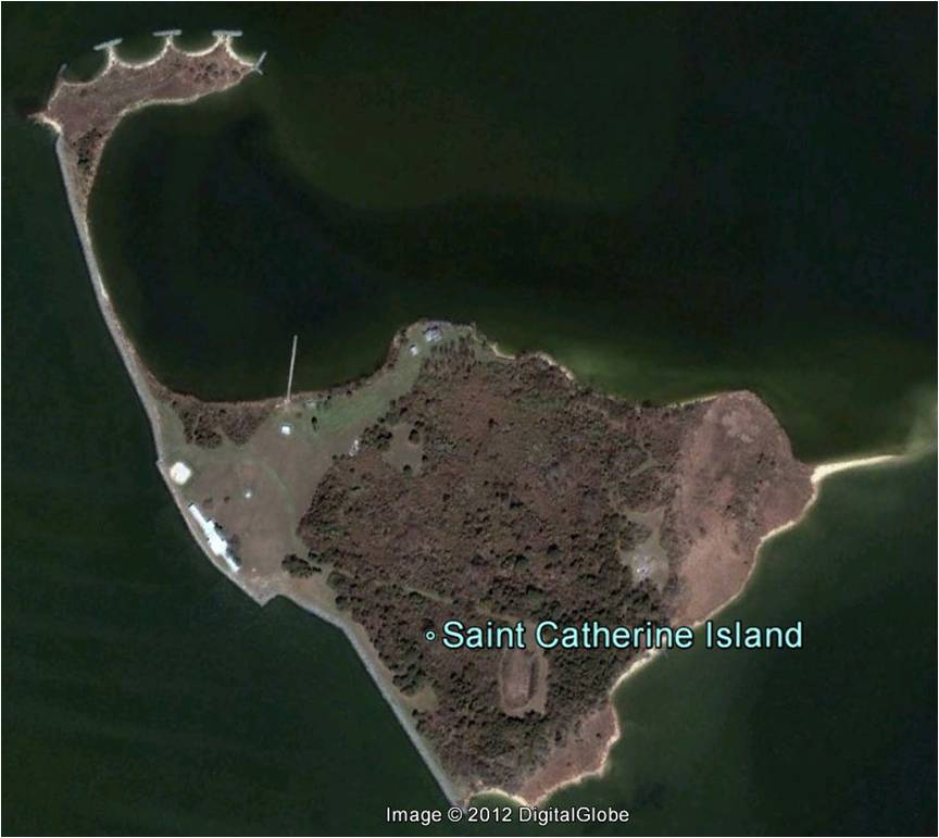 Saint Catherines Island