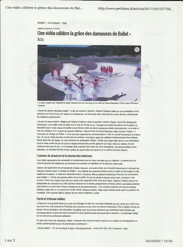 Article Petit Bleu 15 10 17.jpeg