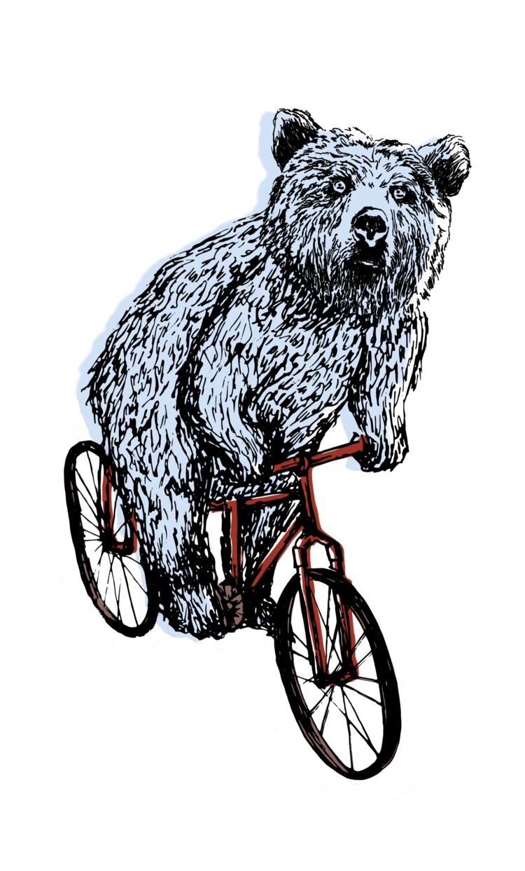 BEAR+ON+BIKE.png