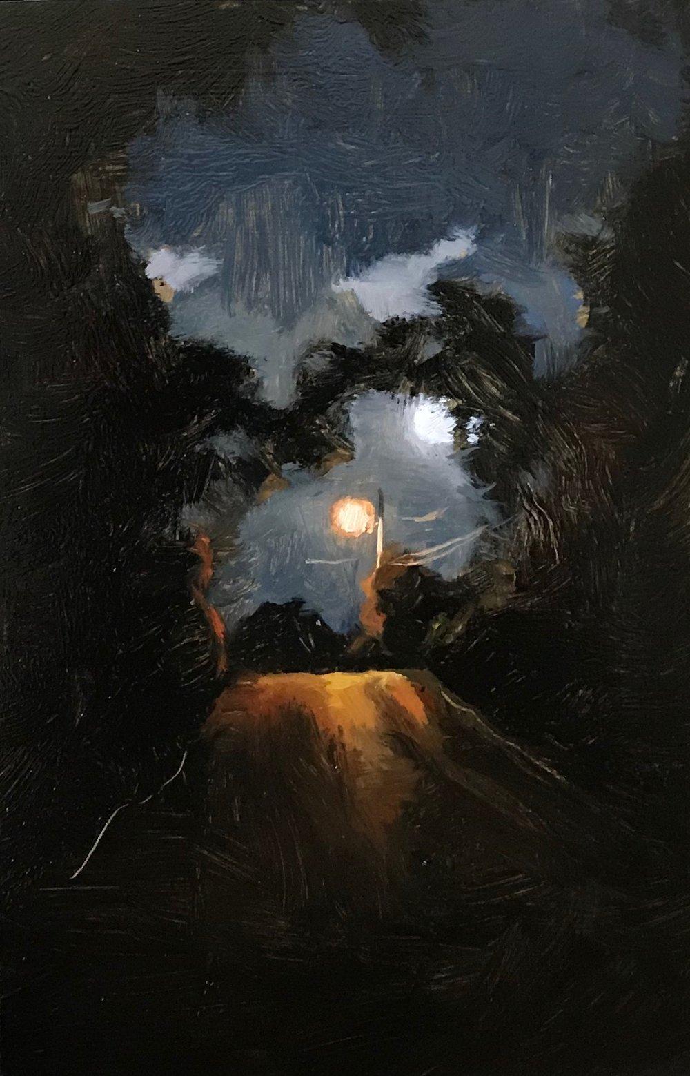 midnight stroll.JPG