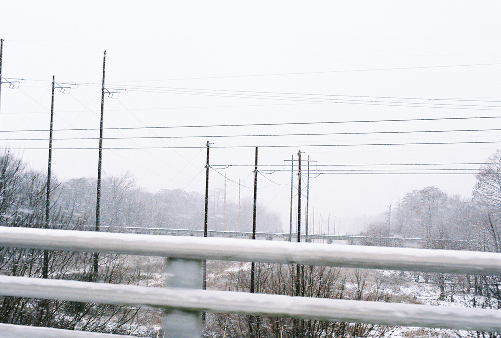 snow_poles2.jpg