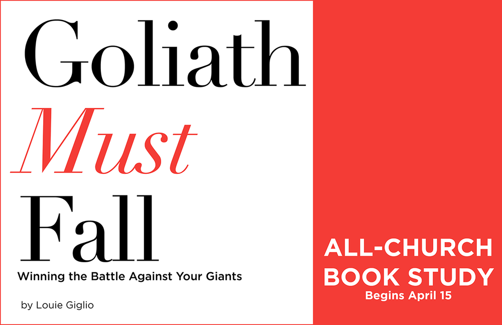 Goliath Must Fall web.png