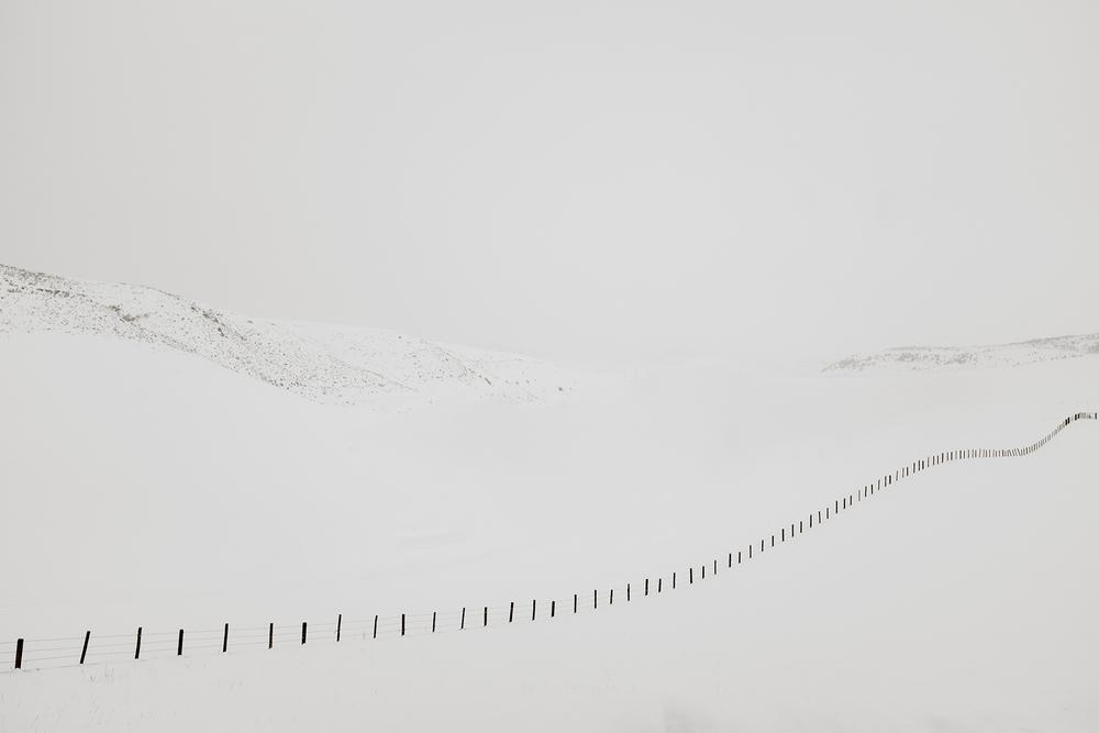 snowfences2.jpg