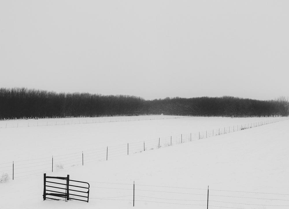 snowfences3.jpg