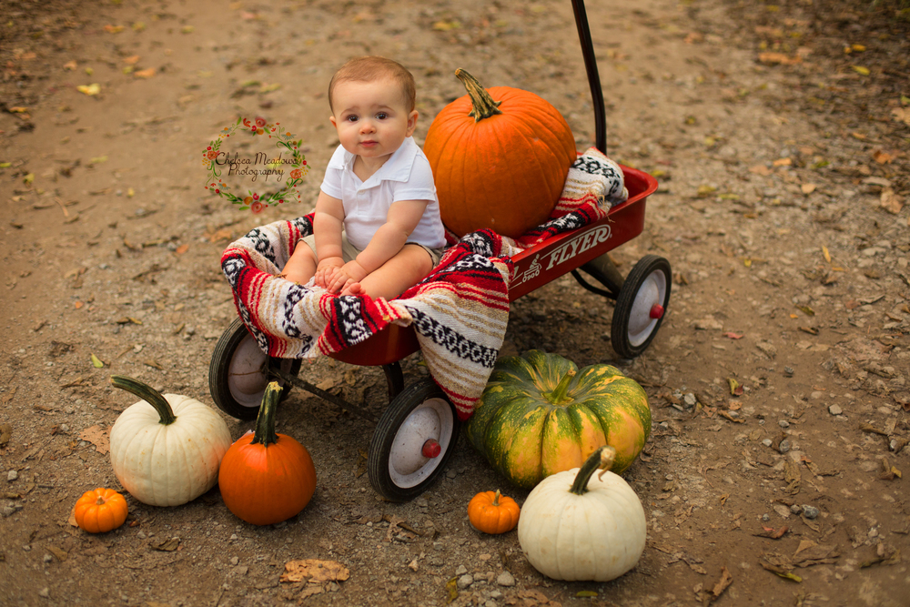 The Perry Family - Cooper 6 Months - Chelsea Meadows Photography (27).jpg