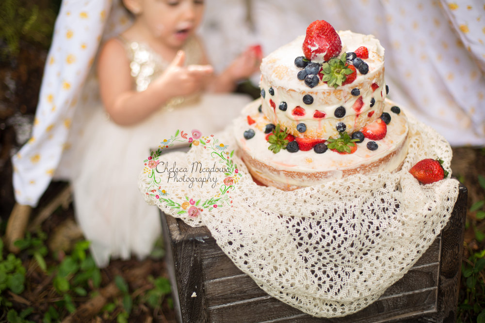 Paisley First Birthay Cake Smash - Nashville Family Photographer - Chelsea Meadows Photography (2).jpg