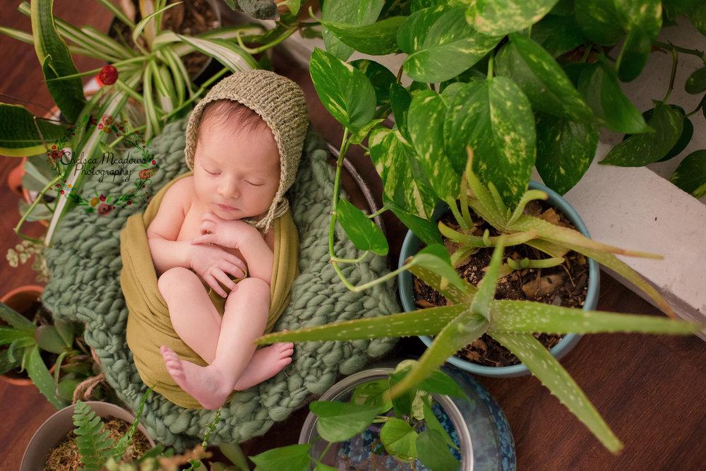 Rowan Newborn Session - Nashville Newborn Photographer - Chelsea Meadows Photography (5).jpg