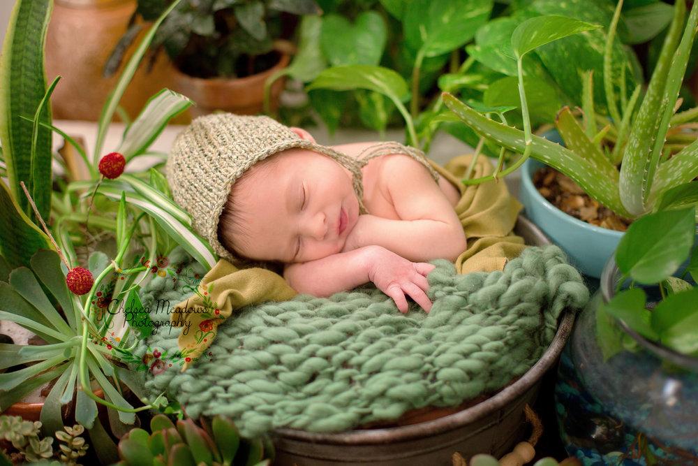 Rowan Newborn Session - Nashville Newborn Photographer - Chelsea Meadows Photography (28)_edited-1.jpg