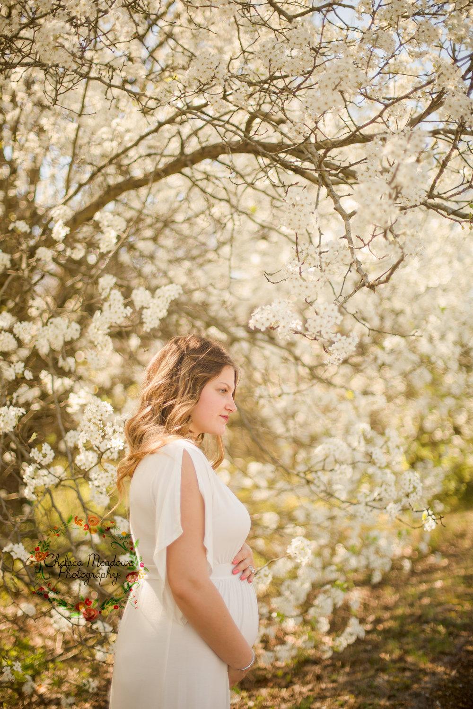 Nicole Spring Maternity Session - Nashville Maternity Photographer - Chelsea Meadows Photography (5)_edited-1.jpg