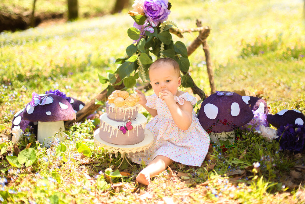 Ivy Cake Smash - Nashville Family Photographer - Chelsea Meadows Photography (13).jpg