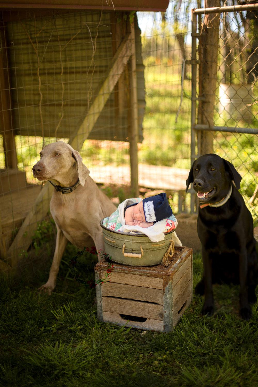 Sawyer Newborn Photos - Nashville Newborn Photographer - Chelsea Meadows Photography (3)-2.jpg