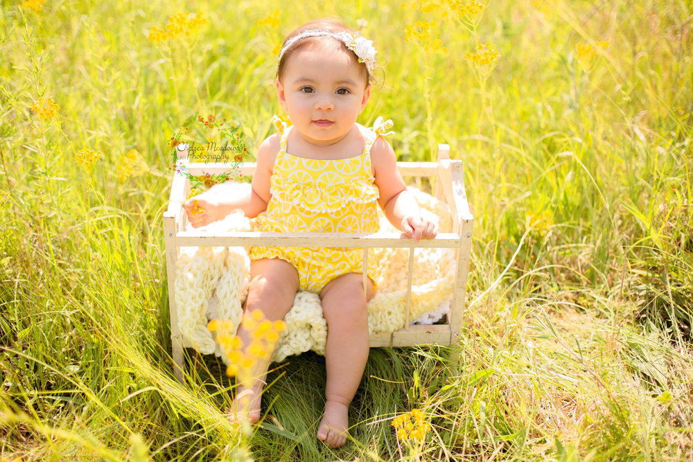 Camryn 6 Month Session - Nashville Family Photographer - Chelsea Meadows Photography (39)_edited-1.jpg