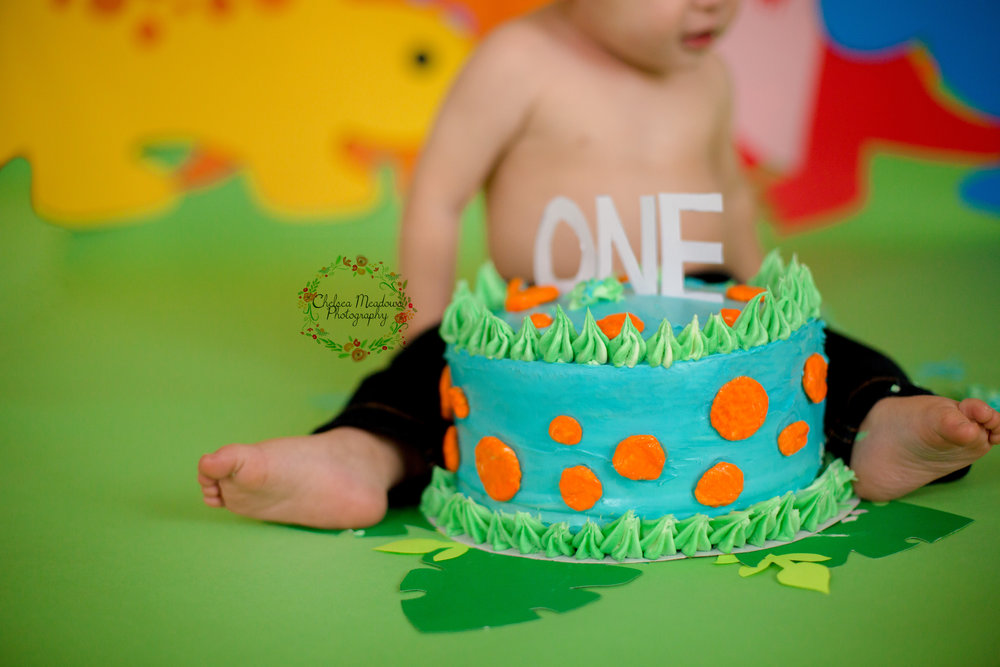 Owen First Birthday - Nashville Family Photographer - Chelsea Meadows Photography (59).jpg