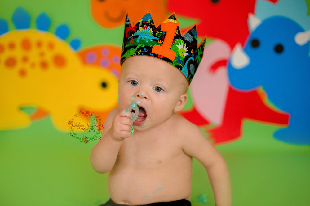 Owen First Birthday - Nashville Family Photographer - Chelsea Meadows Photography (111).jpg