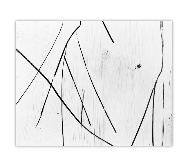 "Untitled -   20"" x 24"" silver gelatin print"
