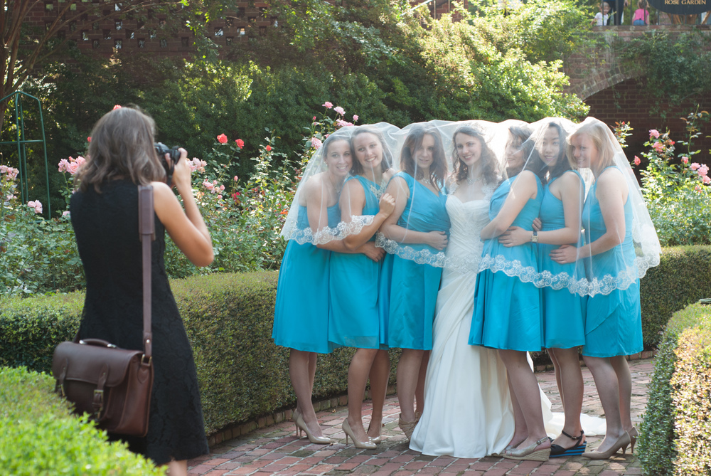 Beautiful Rahab and her bridesmaids! The Furman Rose Garden is so gorgeous.