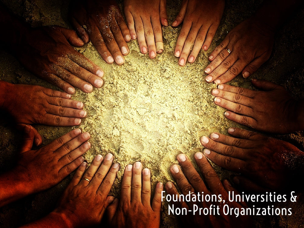 Foundations & Non-Profit Organizations