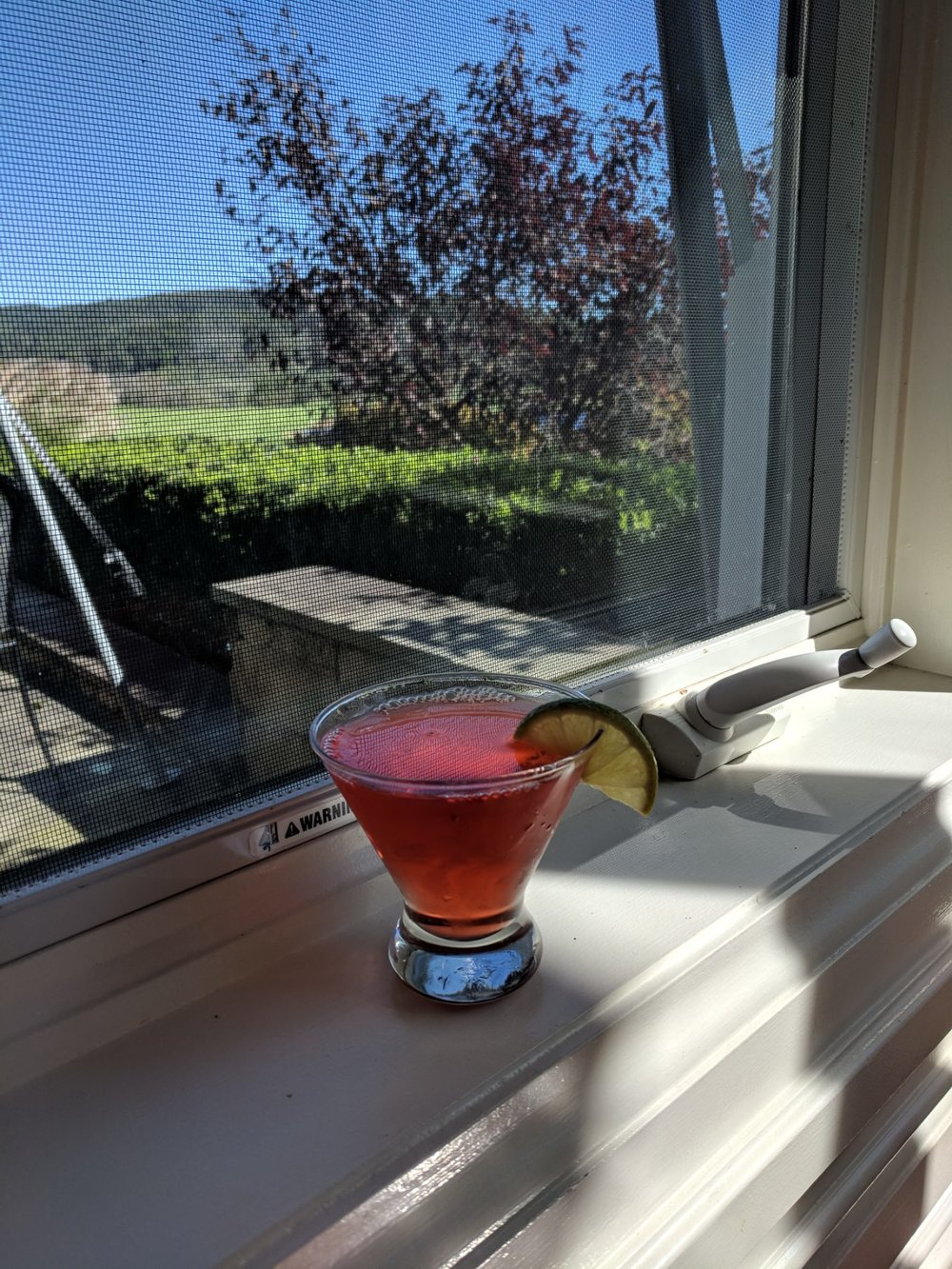 Washington Apple Martini