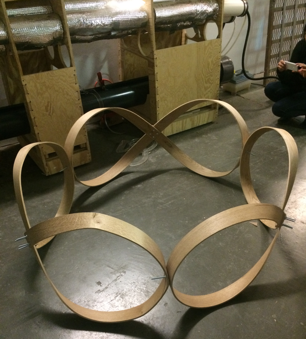 Prototype 1 of the steam bent truss used as a self-inforcing loop that provides the structure and stability to the timber