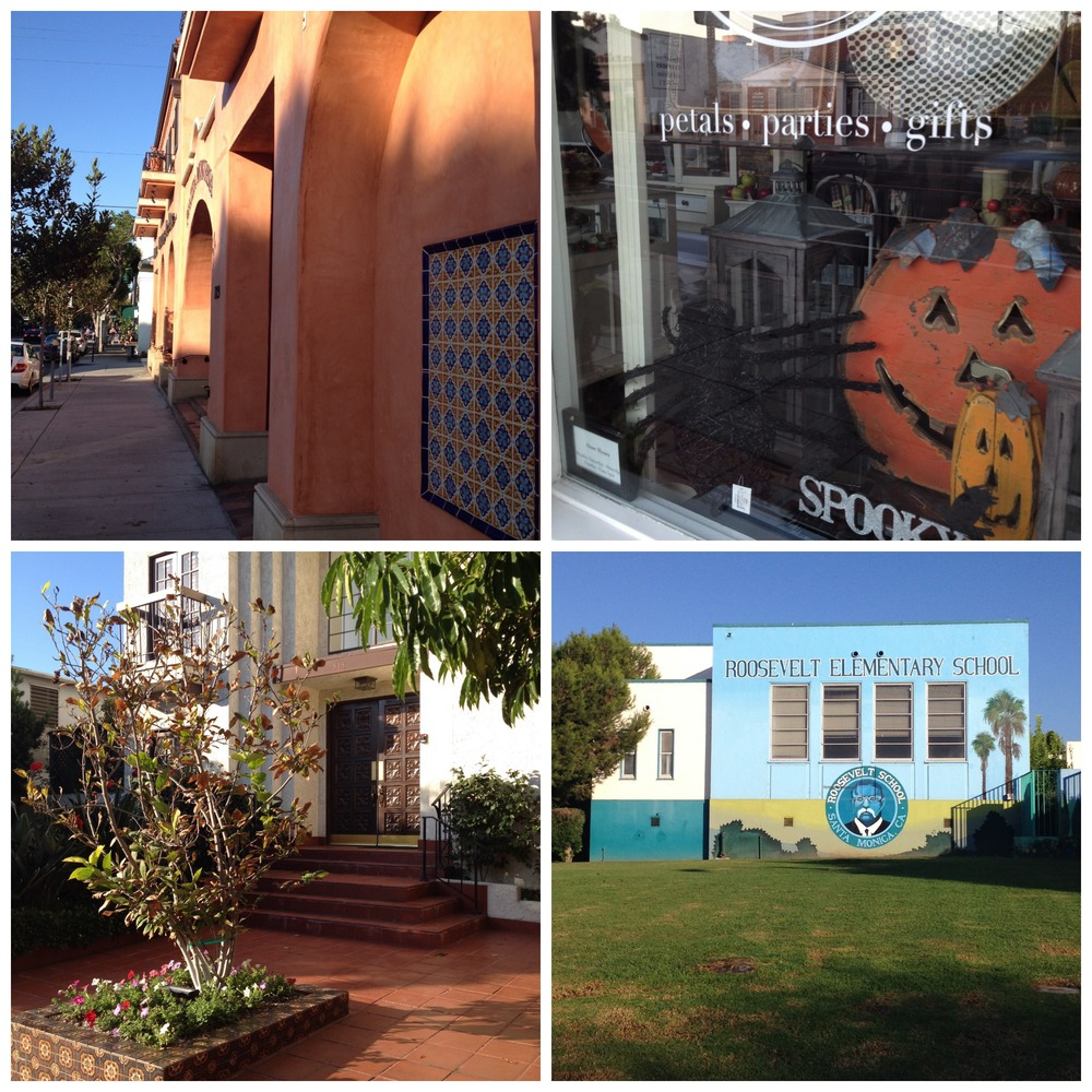 montanan ave collage