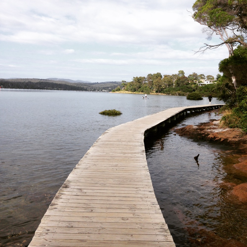 The boardwalk in Merimbula and a man's best friend on a paddle board in the distance...