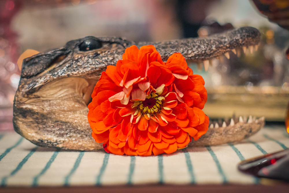 And you know how much we love croc head with a flower in it.