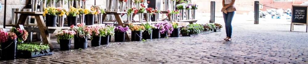 Dumbo Mother's Day Flower Market Pop-Up