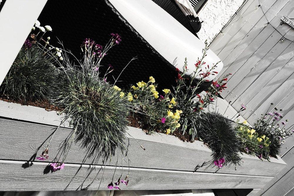 thumbnail_small_MONICA_RICHARDS_FLOWER_BOX_DIY_ECOBABE.jpg