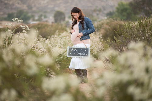 Blanca-fields-maternity-11.jpg