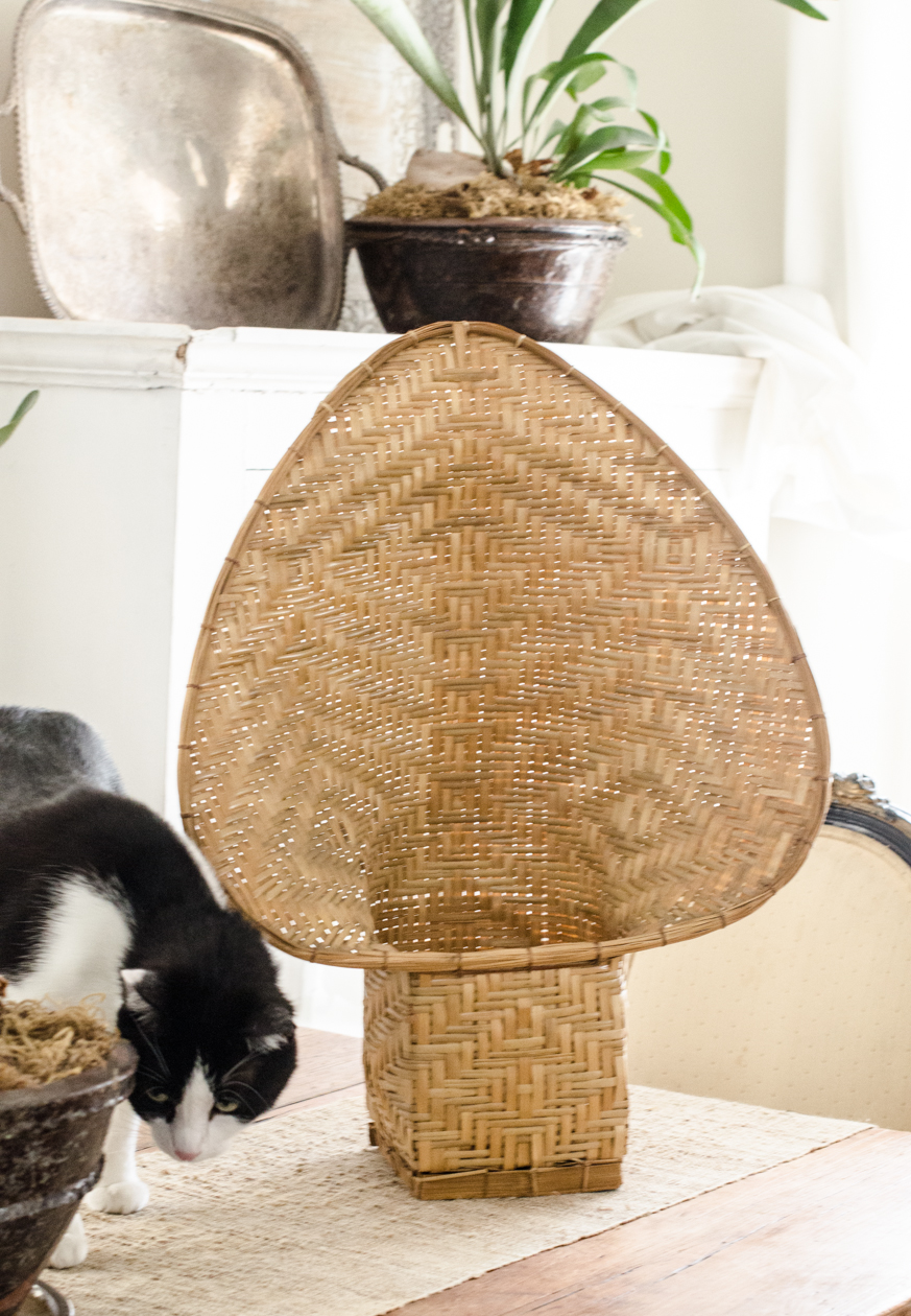 Christie-Cook-Den-Mother-rattan-DIY-Ikat-plant-holder-Los-Angeles-design