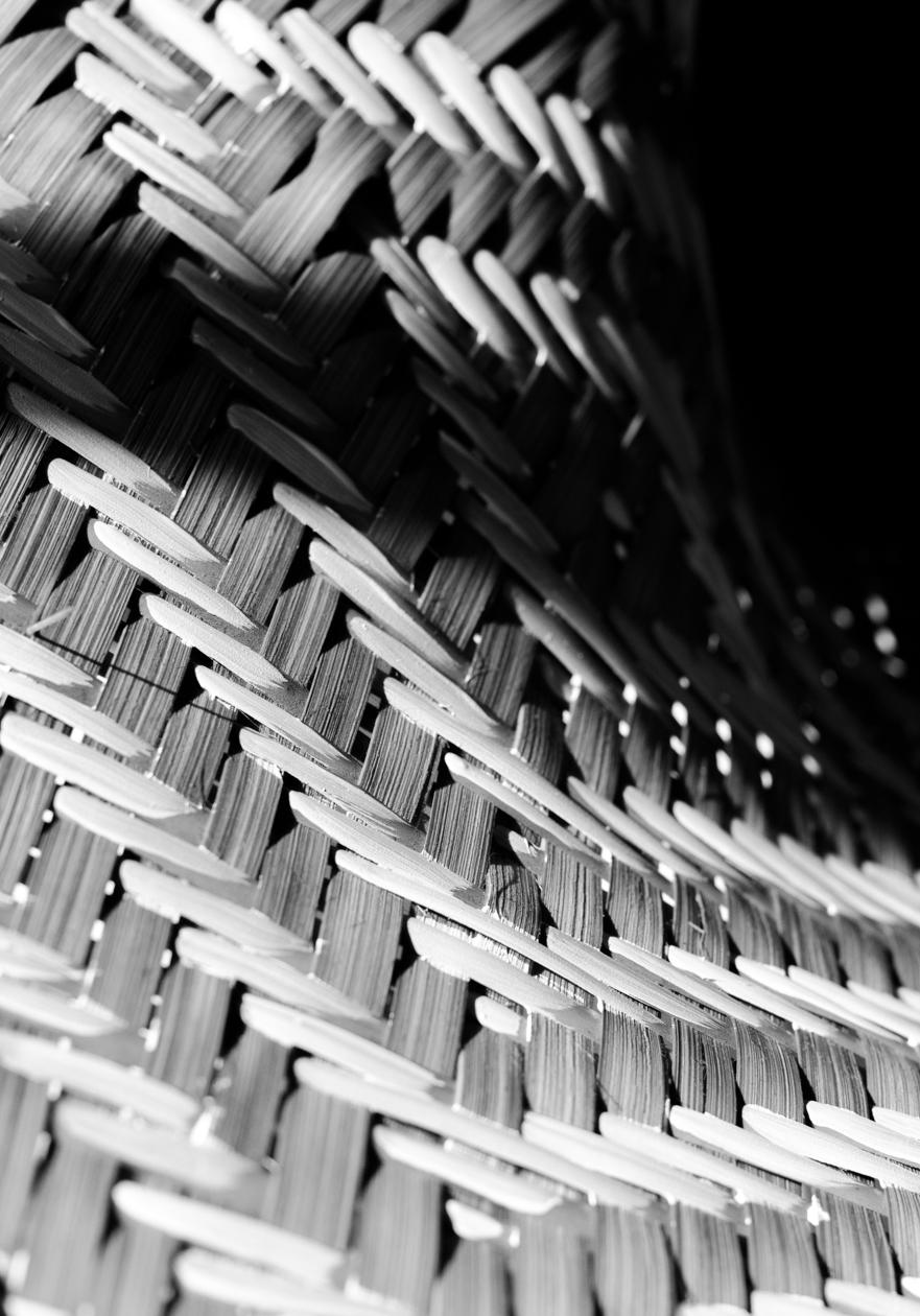 Christie-Cook-Den-Mother-rattan-DIY-Ikat-plant-holder-Los-Angeles-design-black-and-white-2