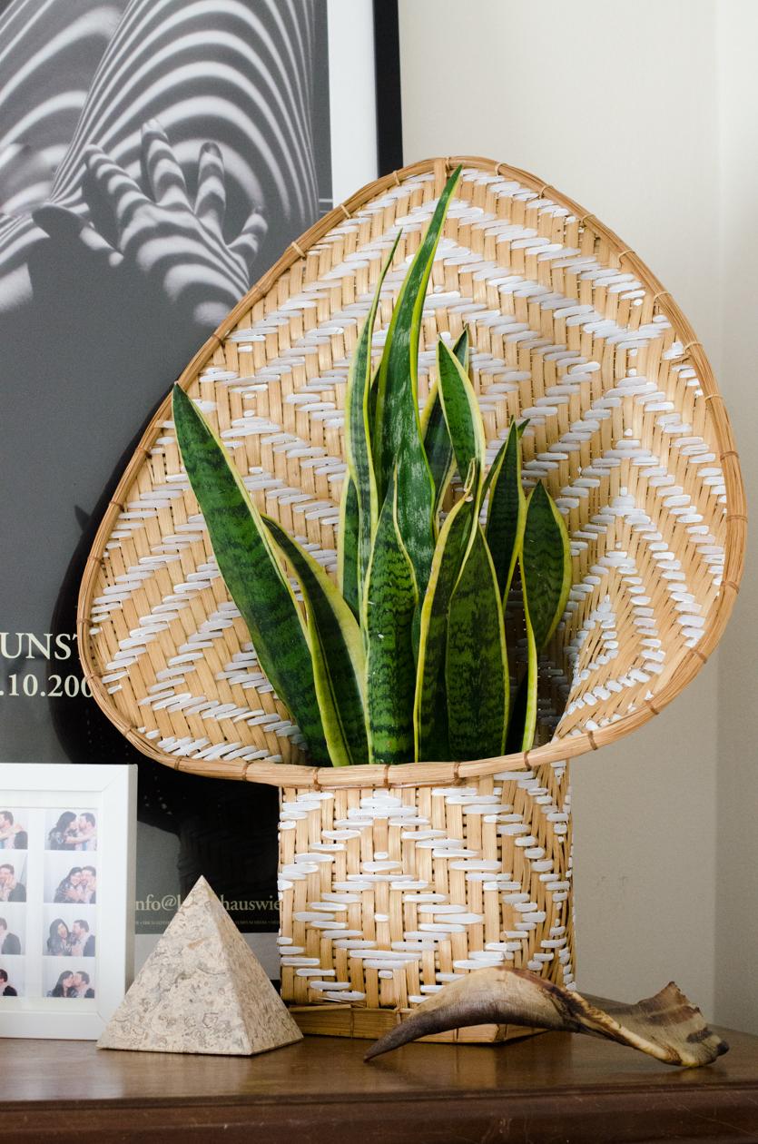 Christie-Cook-Den-Mother-rattan-DIY-Ikat-plant-holder-Los-Angeles-design-installation