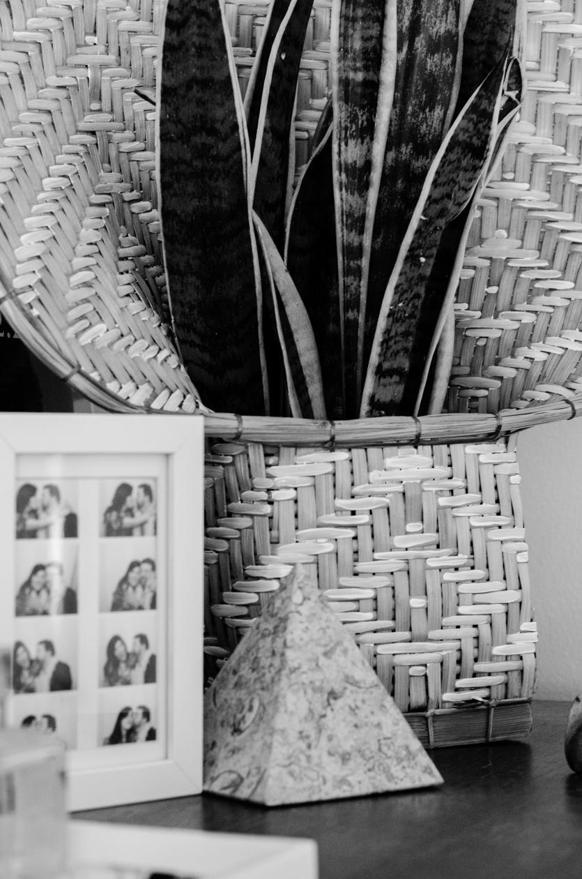 Christie-Cook-Den-Mother-rattan-DIY-Ikat-plant-holder-Los-Angeles-design-installation-black-and-white