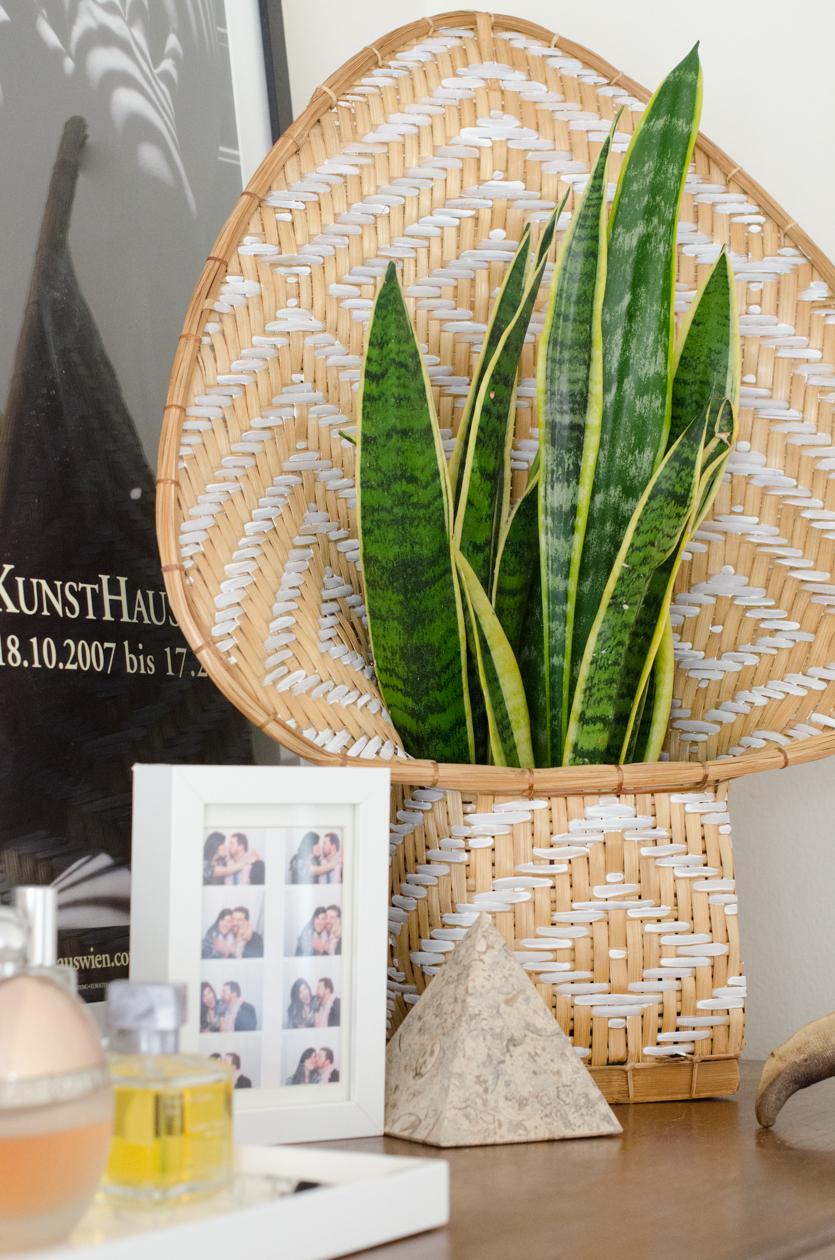 Christie-Cook-Den-Mother-rattan-DIY-Ikat-plant-holder-Los-Angeles-design-perfume-dresser