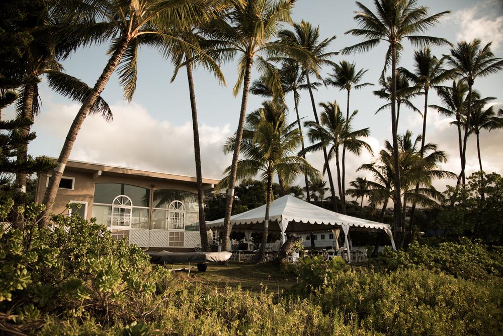 14 March 2014  LOCATION: ʻAina Haina, Wailupe