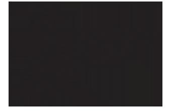 TeamSeattle_Logo_Resized copy.png