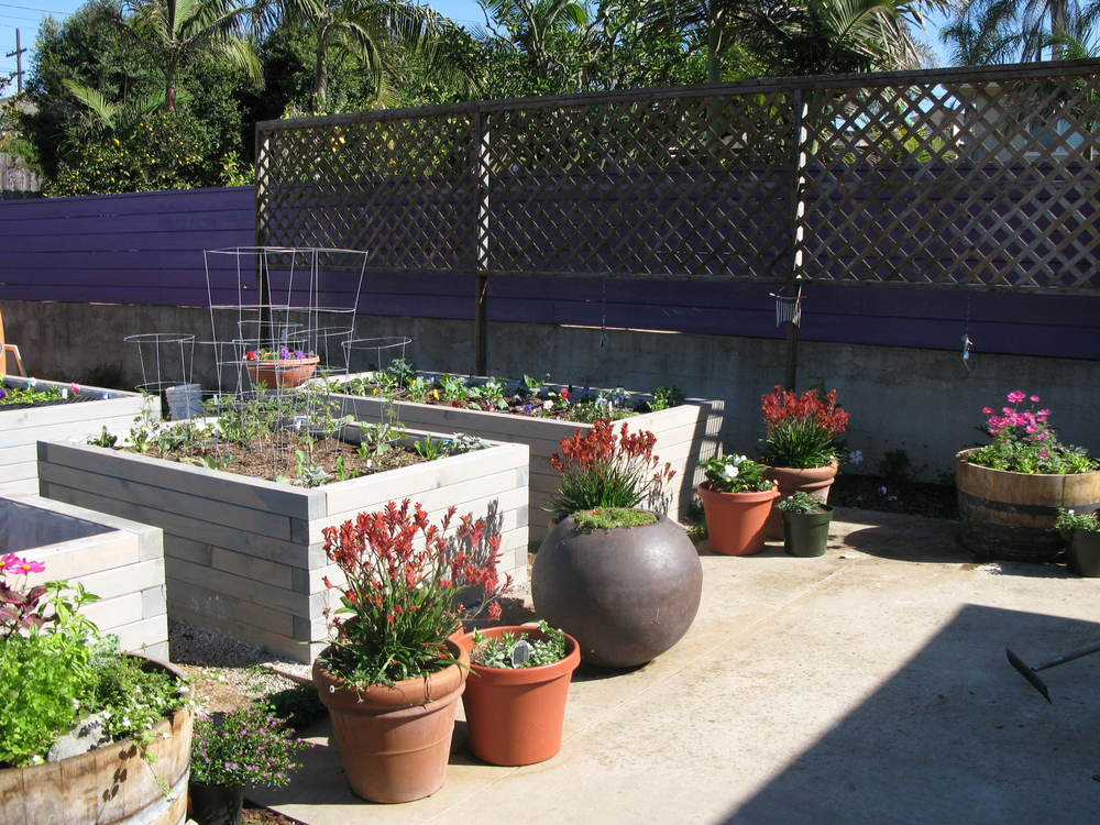 Five of the seven raised beds completed!