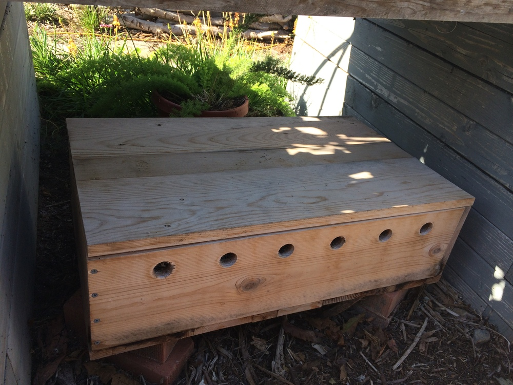 "Simple worm box #1 (pictured): L 30"" x W 18"" x 9""), total project cost $28 using some reclaimed materials Simple worm box #2 (not pictured): L 30"" x W 18"" x 11"" H), total project cost $50 using mostly new materials"