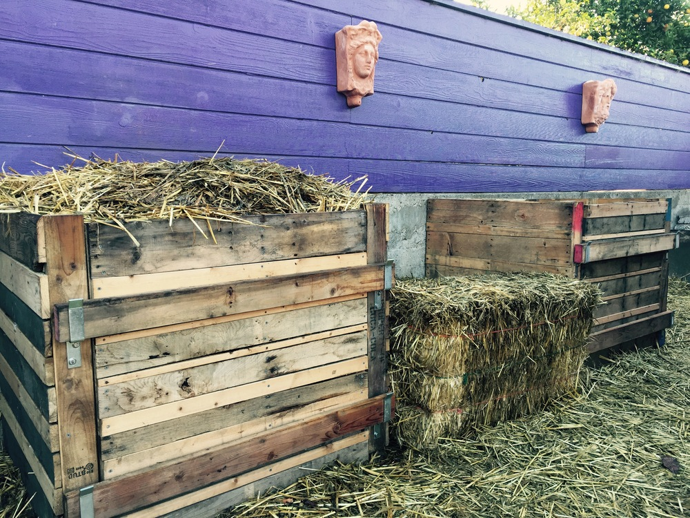 Two bin compost set-up. Upcycled pallets and scavenged lumber. Hardware cost: $65