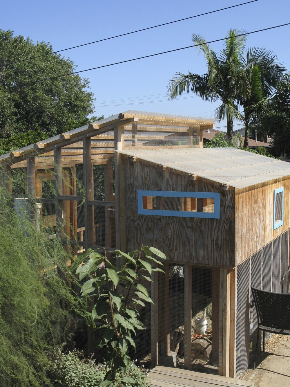 3-level coop designed to be good for the chickens and the flockster.