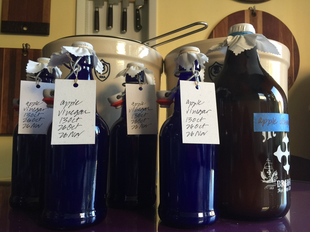 fruit scrap vinegar is super easy and super tasty. be sure to keep the bugs out with muslin and label your creations.