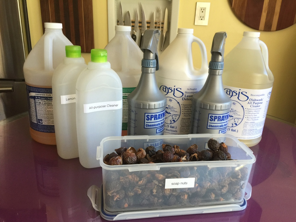 dr bronner's, oasis, bottles for homemade cleaners, and don't forget about soap nuts!