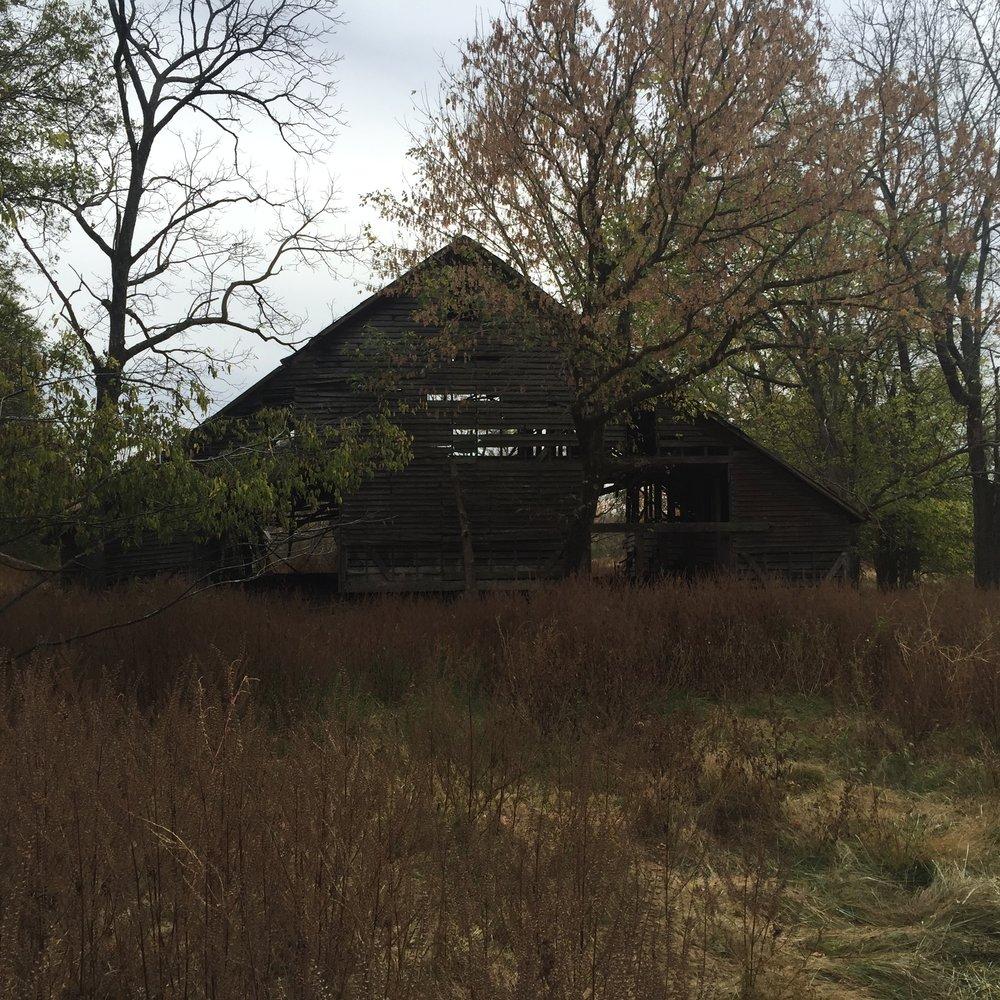 Chapman barn built in 1899.