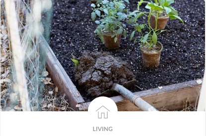 How to Compost - Thrive Market