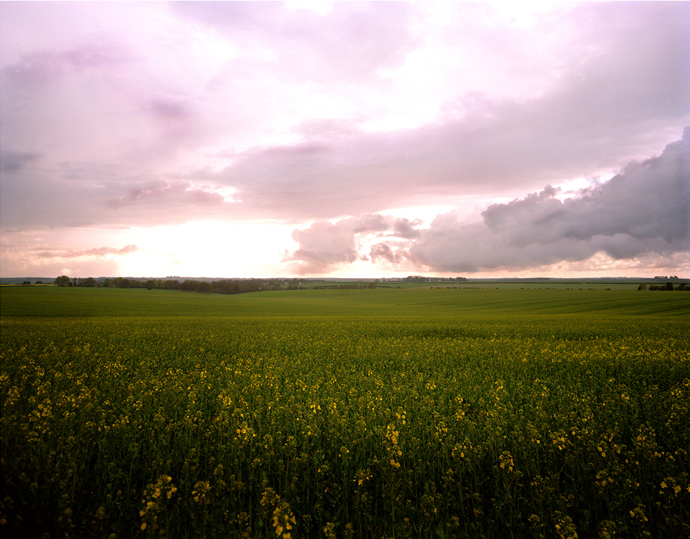 Sailsbury Plain, England