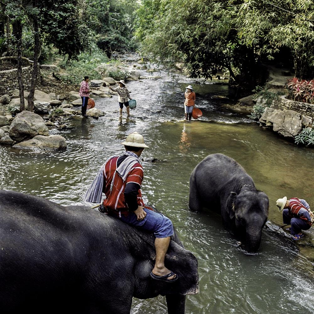 Chiang Mai, Thailand. 2014